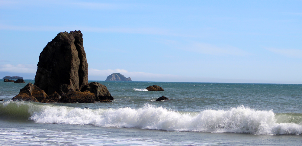 The surf, Port Orford, Oregon