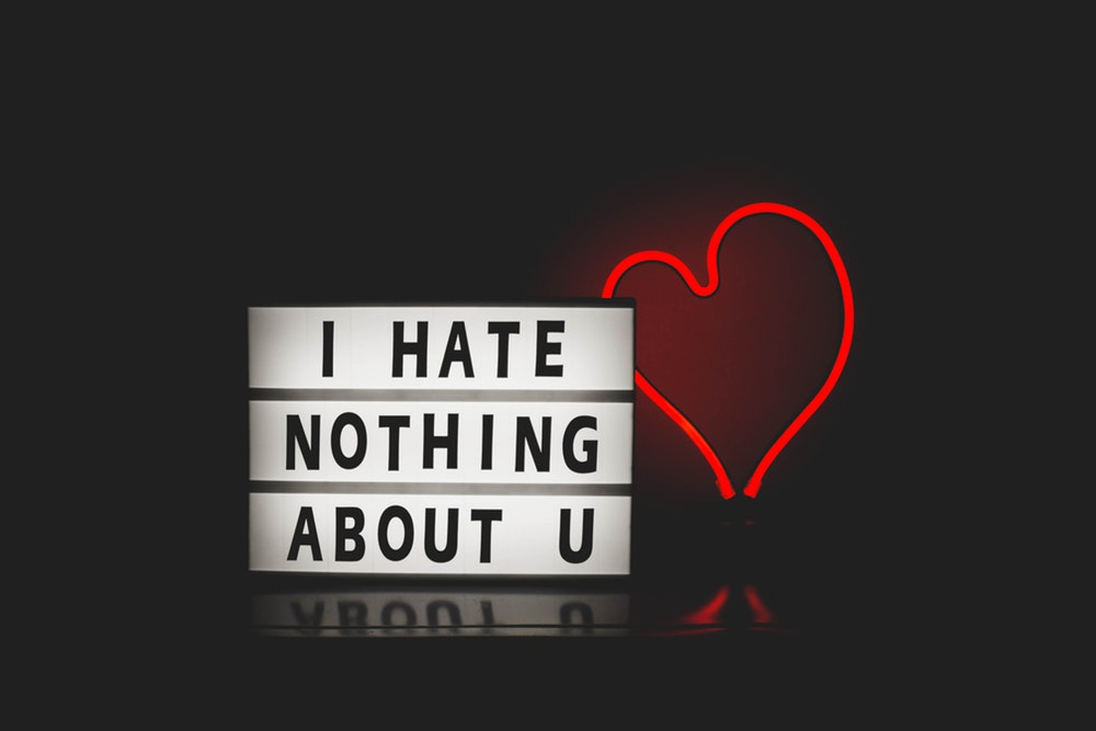 It is true, I could never, ever hate my kids. But, I can sure not like them, and not like the things they say and do. And I never have to be sorry about that.