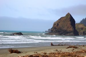 The beach north of Brookings, Oregon.  This is in Curry County.