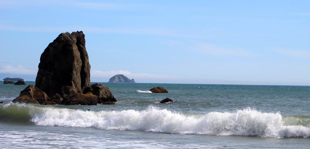The surf, Port Orford, Oregon