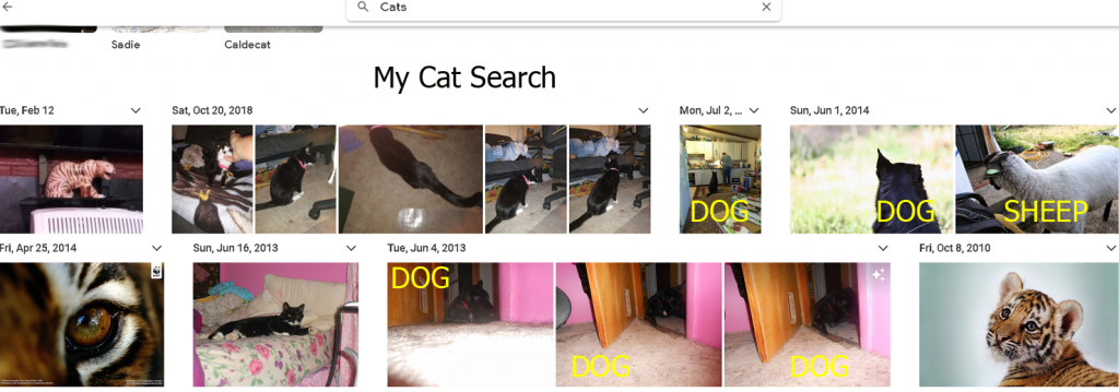 This is what Google Photos found when searching for cats in my photos.  Don't get me wrong, they found cat pictures that I had forgotten that I had.  But, a dog??  And a Sheep??  Isn't AI grand!!  I'm sure they'll get the bugs worked out eventually.